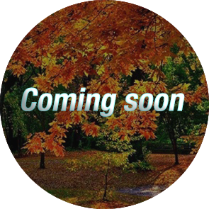 fall coming soon2
